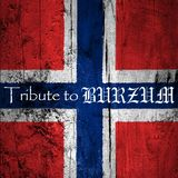 Tribute to Burzum - V/A Compilation 2014