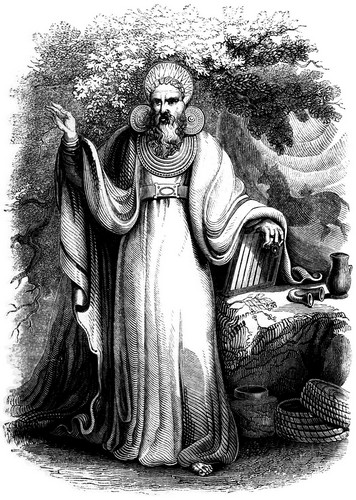Archdruid in his full judicial costume (by Charles Knight)